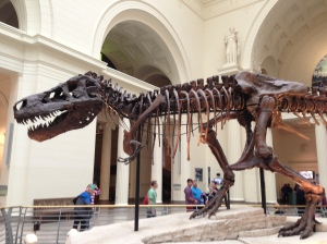 "Summer Fun - The amazing T-Rex ""Sue"" at the Field Museum, Chicago"