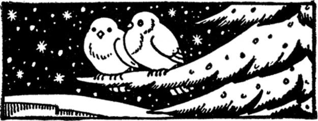 Vintage-Winter-Birds-Image-GraphicsFairy-1024x392